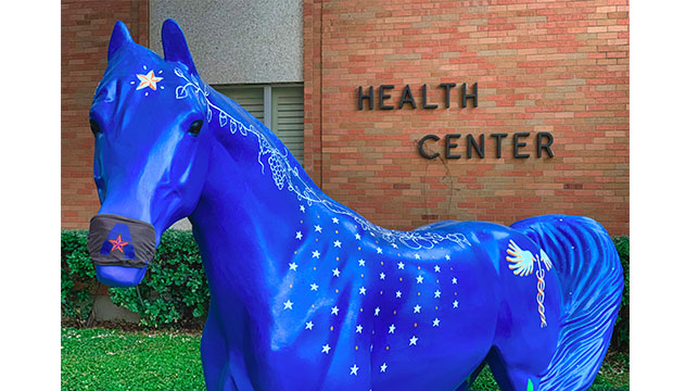 Harmony, UTA's new spirit horse, painted blue with the medical symbol on its flank.