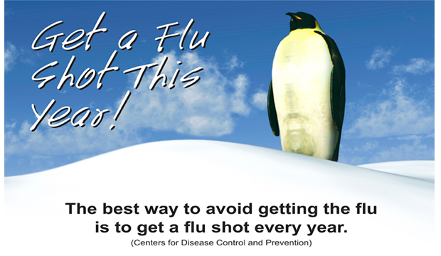 Get a Flu Shot This Year. The best way to avoid getting the flu is to get a flu shot every year. (Centers for Disease Control and Prevention)