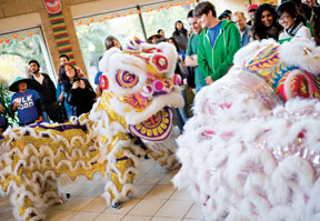 Lion and Dragon dance 2012