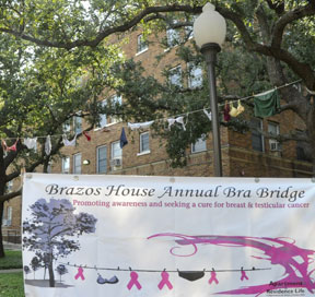 Brazos Bra Bridge