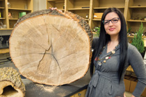 Sarah Mahon with cross section of oak tree